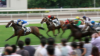 Starting horse race betting on Coral sports - Novice Punter guide to racing